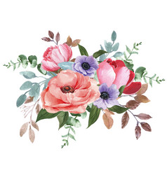 botanical flower watercolor bouquet elegance vector image