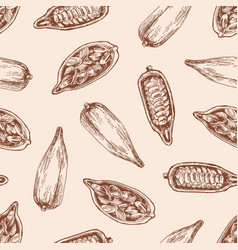 cocoa pod with seeds seamless pattern vector image