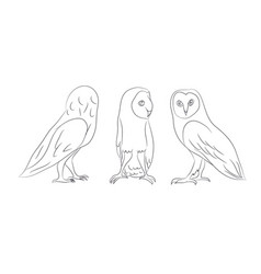 owl stands drawing lines vector image
