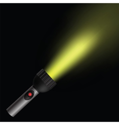 torch light vector image vector image