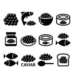 Caviar roe fish eggs icons set vector image vector image