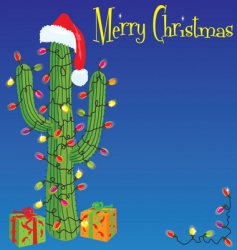 Christmas cactus background vector image