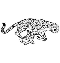 running cheetah black and white vector image vector image
