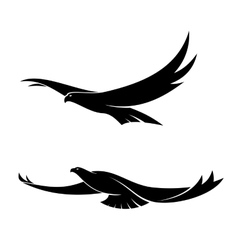 Two graceful flying birds vector image vector image