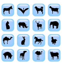 animal buttons vector image