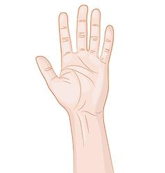 Greeting Hand Gesture vector