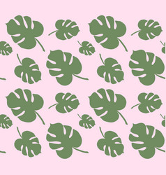 pattern white monstera palm leaves vector image