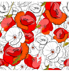 seamless of poppies vector image