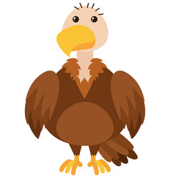 vulture on white background vector image