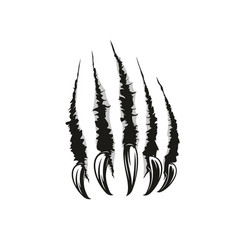 wild animal claw scratches vector image