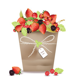 berry fruits and cherry in a basket vector image