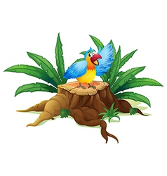 A colorful parrot above a stump vector image