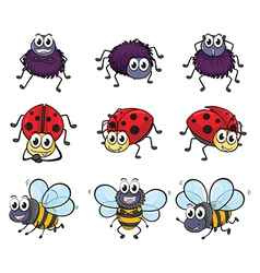 A spider a ladybug and a bee vector image