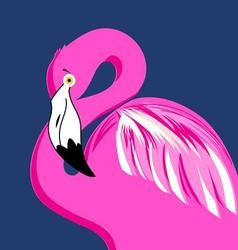 Graphic portrait of pink flamingos vector