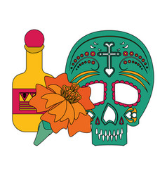 Mexico festival and mexican celebrations cartoons vector