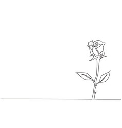 single continuous line drawing fresh romantic vector image