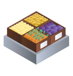 vegetables supermarket box icon isometric style vector image