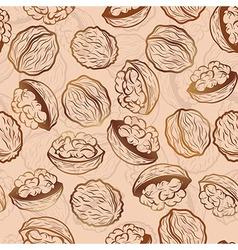 Walnut seamless pattern vector image vector image