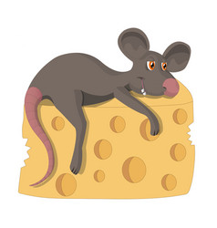 a contented rat with a piece of cheese vector image