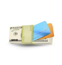 Cash money vector