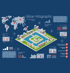 city infographics of the town with houses vector image