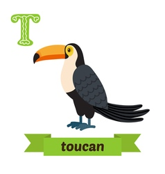 Toucan T letter Cute children animal alphabet in vector image