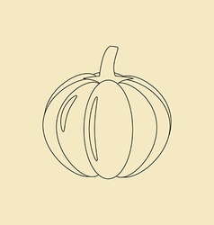 Pumpkin Vegetable Icon vector image vector image