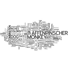 affenpinscher the monkey dog text word cloud vector image