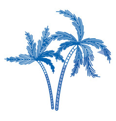 blue shading silhouette of two palm trees vector image