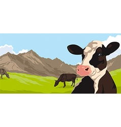 Cows with grass and mountains vector image