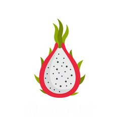 dragon fruit icon flat style vector image