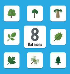 Flat icon ecology set of oaken alder evergreen vector