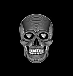 graphic print of stylized skull on black vector image