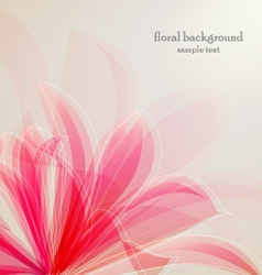 lily flower abstract background vector image