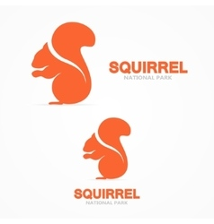 Squirrel logo vector