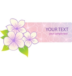 beautiful tropical floral banner vector image vector image