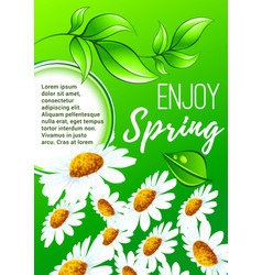 spring flower poster for springtime holiday design vector image