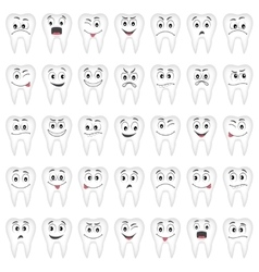 Teeth set for your design vector image vector image