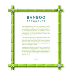 bamboo frame eco spa resort background vector image
