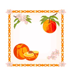 Button Peach with leaves and flowers vector