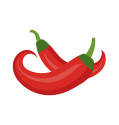 Chili icon flat cartoon style red pepper is vector