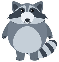 cute raccoon with happy face vector image