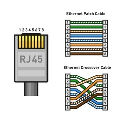 Ethernet connector pinout color code straight vector