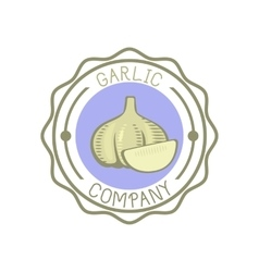 Garlic badge vector image