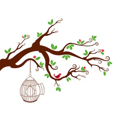 Tree Branch with bird cage and beautiful birds vector image vector image