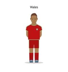 Football kit Wales vector image