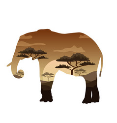 double exposure bear elephant camel and vector image