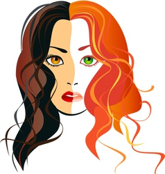 a girl blondes and brunettes in one person vector image