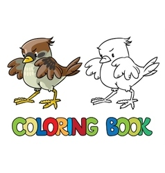 Brave sparrow coloring book vector