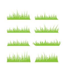 grass background template design vector image